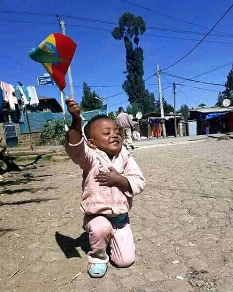 Geremew Alemayehu Profile Picture