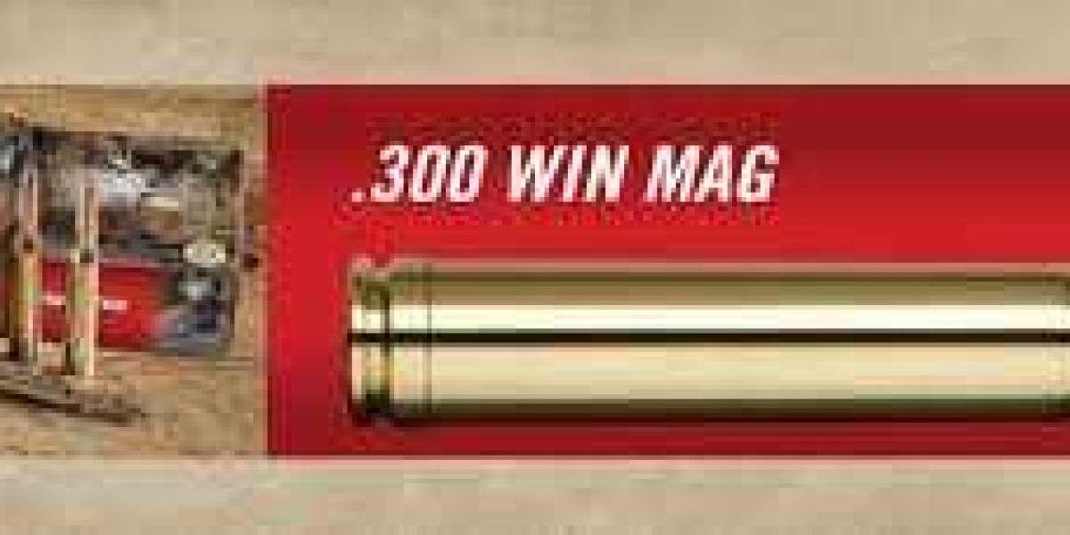 Get Best 300 Cartridges Winchester Magnum for Deer Hunting
