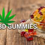 levelcbd gummies Profile Picture
