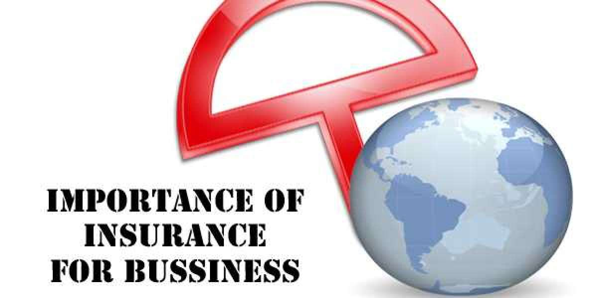 Importance Of Insurance To Your Business